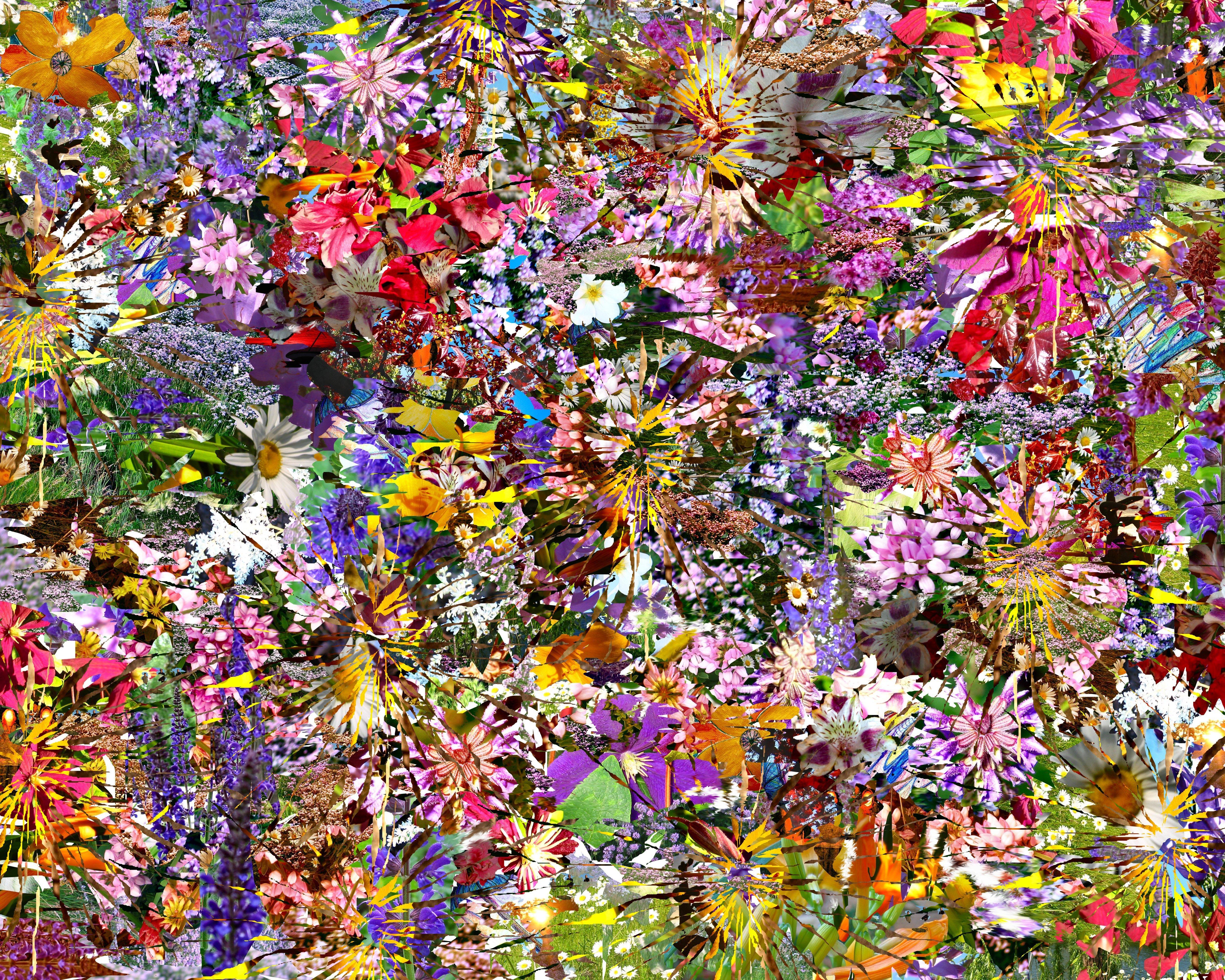 soul amp photo collage psychedelic flower photos flower rainbow bass line on fender guitar. Black Bedroom Furniture Sets. Home Design Ideas