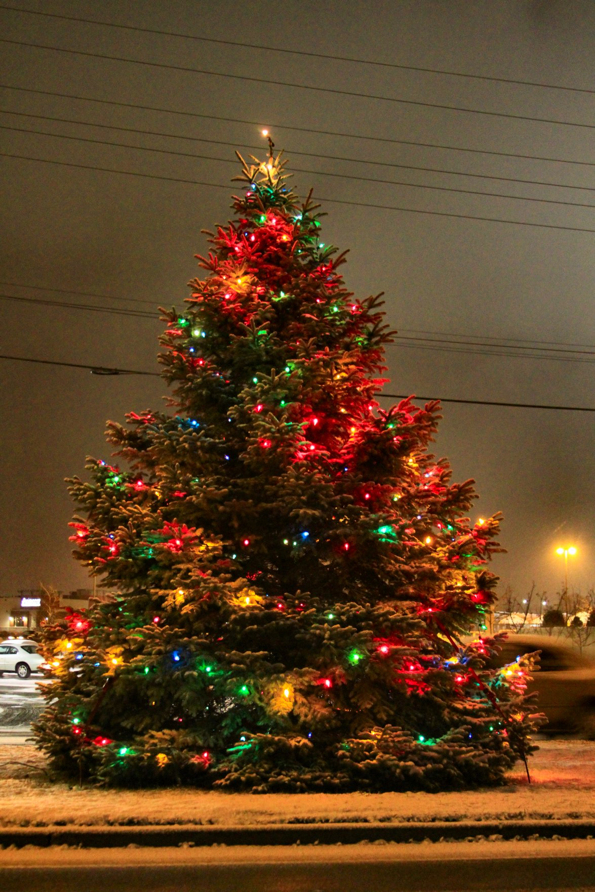christmas tree in west allis wi 2009 soul ampcom - Christmas Tree Night Light
